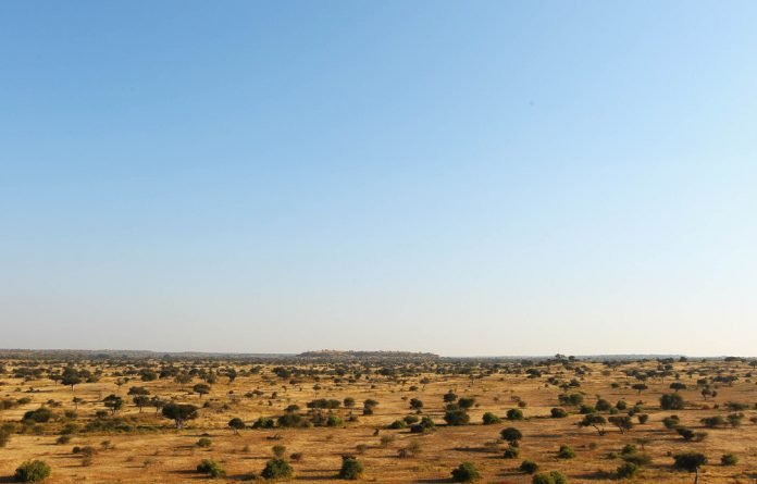 A view over a savanna at the Mashatu game reserve on July 27