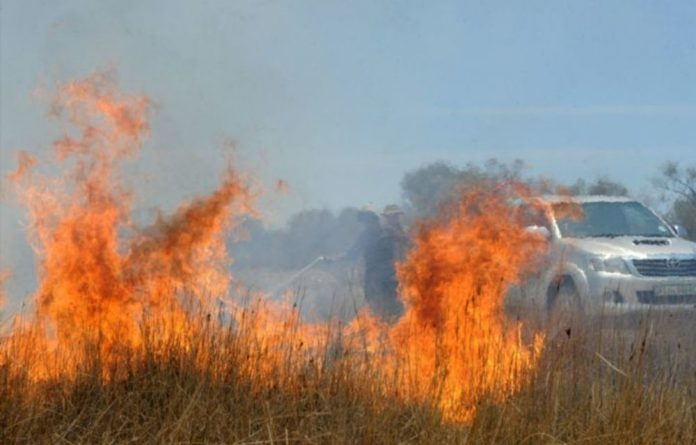 The Overstrand fire in the Western Cape has already ripped through two-thousand hectares of fynbos.