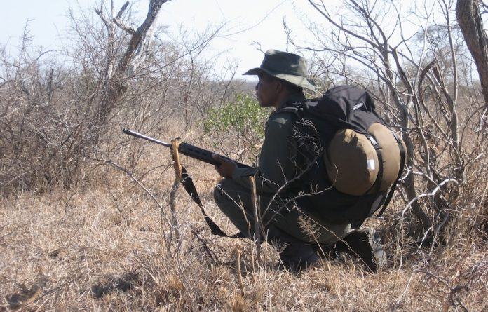 The college is the anti-poaching training provider for the Kruger Park.