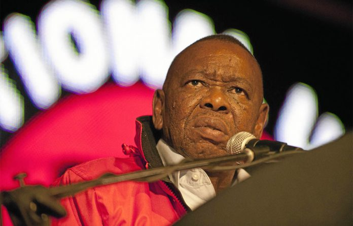 Higher Education Minister Blade Nzimande.
