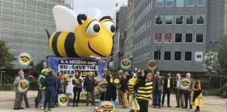 Campaigners dressed in black and yellow bee suits rallied outside the headquarters of the European Commission in Brussels ahead of the vote for a ban on three key pesticide chemicals.