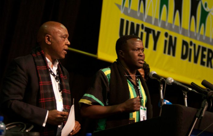 A Limpopo ANC delegate