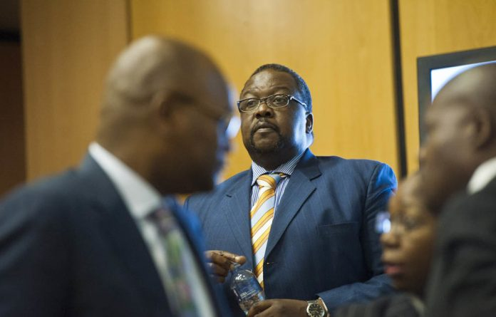 Police Minister Nathi Nhleko said he was convinced that had Helen Suzman been alive today