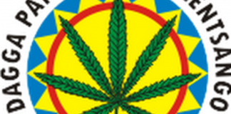 Acton said the party was already nationally registered with a seven-pointed cannabis leaf as its logo.