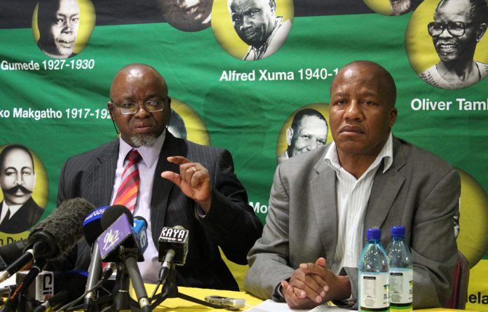 No little thing: Gwede Mantashe and the ANC take serious exception to the Spear