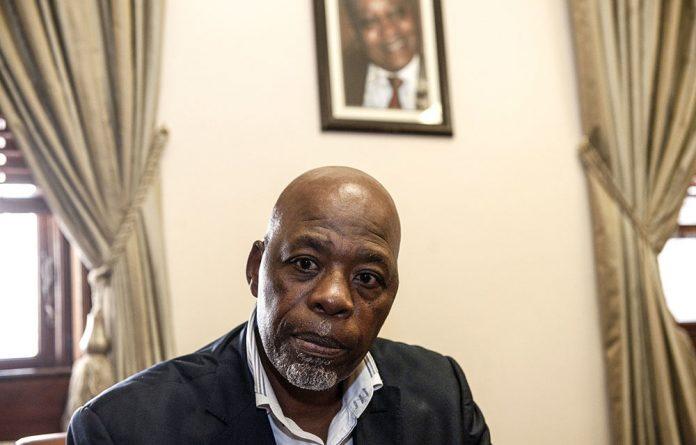 Stone Sizani says Nathi Nhleko's report