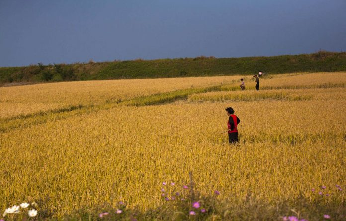 Farmers stand in a field outside the eastern coastal city of Wonsan