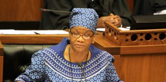 The new speaker of the National Assembly