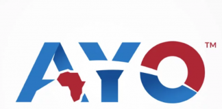 Ayo Technology Solutions had accounting adjustments made to their financial statements