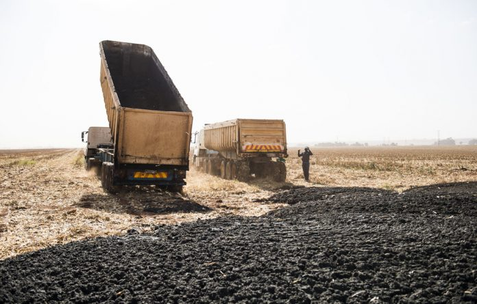 Waste of energy: Trucks carry untreated sewage sludge from Northern Water Waste Treatment Works to farms. If the sludge were used to produce electricity