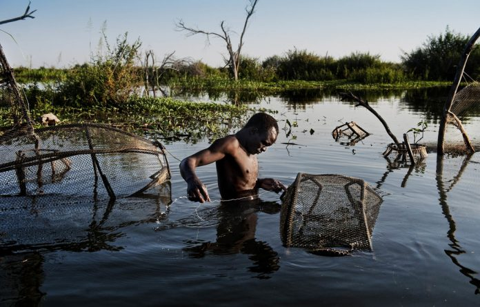 Casting a wider net: Gambo Mahamadou in Lake Chad. Africans must unite to tackle climate change.