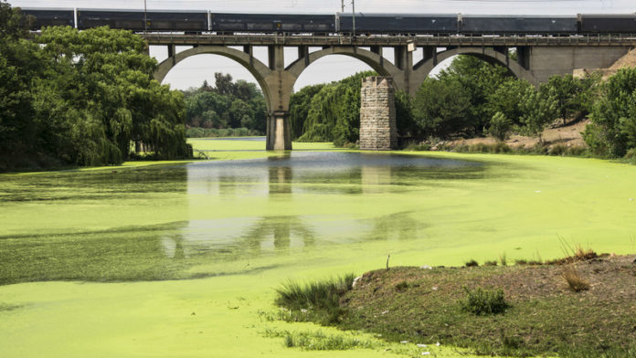 Tens of millions spent on repairs but sewage still flows in the Vaal