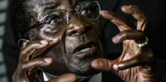 Downfall: Robert Mugabe got his talons into Zimbabwe
