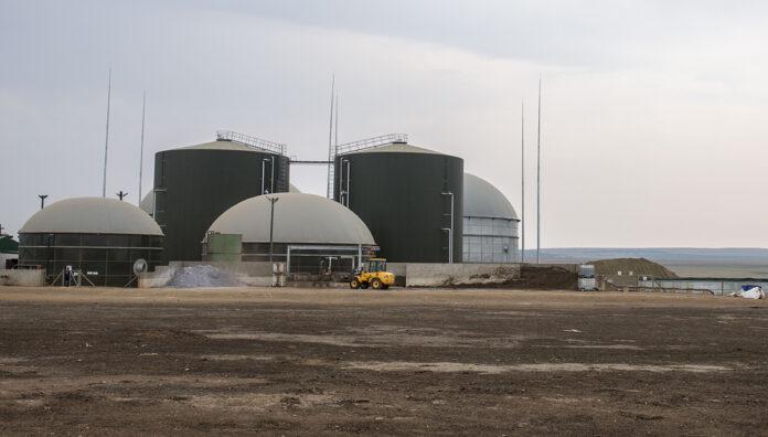 Bio2Watt's Bronkhorstspruit biogas plant supplies energy to a BMW factory in Pretoria